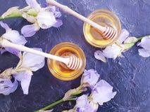 新鲜的在具体背景春天的蜂蜜甜虹膜花 库存照片