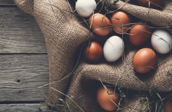 新鲜的在大袋,有机耕田背景的鸡红皮蛋 免版税库存图片