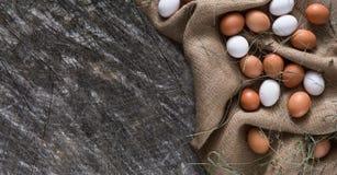 新鲜的在大袋,有机耕田背景的鸡红皮蛋 库存图片
