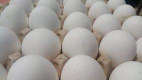 新鲜的在市场上安置的鸡蛋纸盒的农厂鸡白鸡蛋 免版税库存照片