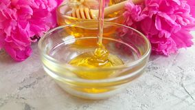 新鲜的在灰色混凝土的蜂蜜甜开花的水滴营养牡丹收获 影视素材