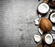 新鲜的坚硬椰子 免版税库存照片