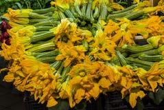 新鲜的夏南瓜的美好的收藏与开花一起的 免版税图库摄影