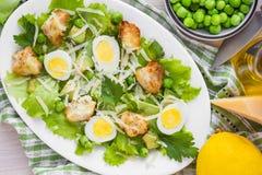 新鲜的夏天沙拉用莴苣,鸡蛋,乳酪,油煎方型小面包片,绿色 库存照片