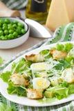 新鲜的夏天沙拉用莴苣,鸡蛋,乳酪,油煎方型小面包片,绿色 免版税库存照片