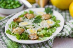 新鲜的夏天沙拉用莴苣,鸡蛋,乳酪,油煎方型小面包片,绿色 免版税图库摄影