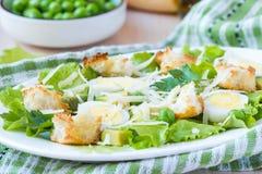 新鲜的夏天沙拉用莴苣,鸡蛋,乳酪,油煎方型小面包片,绿色 图库摄影
