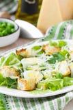 新鲜的夏天沙拉用莴苣,鸡蛋,乳酪,油煎方型小面包片,绿色 库存图片