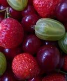 新鲜的夏天莓果,健康食品 库存照片