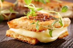 新鲜的多士用乳酪和草本 库存图片