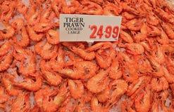 新鲜的大老虎大虾在显示的被击碎的冰烹调了与价牌的待售在鱼市上 免版税库存照片