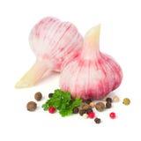 新鲜的大蒜用被隔绝的香料和荷兰芹 免版税库存图片