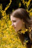 新鲜的女孩嗅到的野花年轻人 免版税库存图片