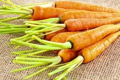 新鲜的嫩胡萝卜 免版税库存图片