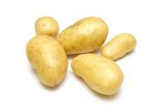 新鲜的嫩马铃薯 免版税库存照片