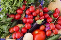 新鲜的季节性菜 库存照片