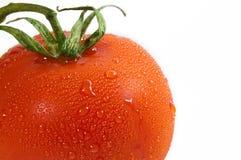 新鲜的宏观蕃茄 免版税库存照片