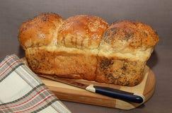 新鲜的家制面包 库存图片
