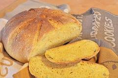 新鲜的家庭焙制的南瓜面包 库存图片