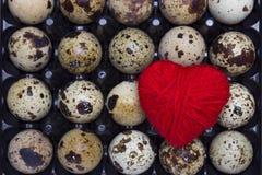 新鲜的小未煮过的鹌鹑蛋一张顶上的照片在黑塑胶容器和红色心脏 我喜欢健康生活方式, healt 库存照片