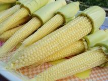 新鲜的小玉米为烹调做准备 免版税库存图片