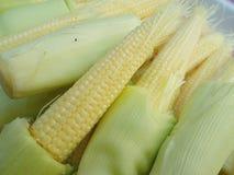 新鲜的小玉米为烹调做准备 免版税图库摄影