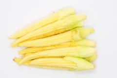 新鲜的小玉米 免版税库存照片