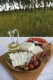 新鲜的山羊乳干酪表 库存照片
