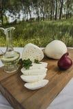 新鲜的山羊乳干酪20 图库摄影