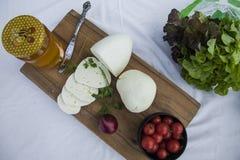 新鲜的山羊乳干酪22 图库摄影