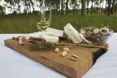 新鲜的山羊乳干酪30 免版税库存图片