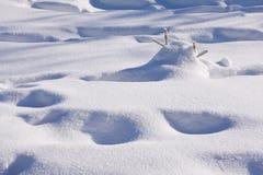 新鲜的山雪 免版税图库摄影
