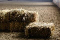 新鲜的干草砖  免版税库存图片
