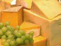 新鲜的干酪 库存图片