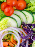 新鲜的庭院沙拉 免版税库存图片