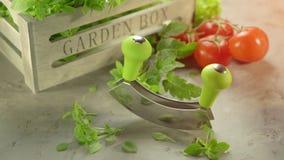新鲜的庭院草本和砍刀子有木箱的 影视素材