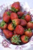 新鲜的庭院草莓 库存图片