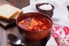 新鲜的开胃蔬菜汤 图库摄影
