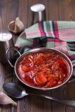 新鲜的开胃蔬菜汤 库存照片