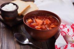 新鲜的开胃蔬菜汤 免版税库存图片