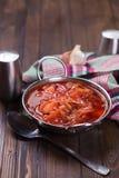 新鲜的开胃蔬菜汤 免版税库存照片