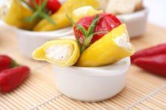 新鲜的意大利开胃小菜 库存照片