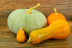 新鲜的成熟南瓜 健康饮食的菜 库存图片