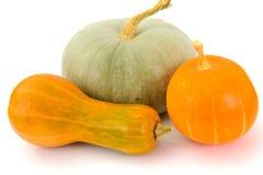 新鲜的成熟南瓜 健康饮食的菜 库存照片