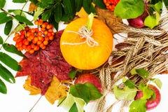 新鲜的成熟南瓜 健康饮食的菜 免版税图库摄影