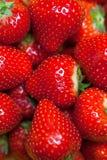 新鲜的成熟完善的草莓,食物框架背景 免版税图库摄影