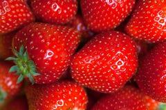 新鲜的成熟完善的草莓,食物框架背景 免版税库存照片