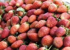 新鲜的成熟完善的草莓-食物背景 库存照片