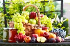 新鲜的成熟有机果子在庭院里 平衡饮食 免版税库存照片