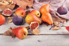 新鲜的成熟果子和叶子的抽象构成在白色 免版税库存照片